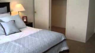 Craigslist Ann Arbor Rooms For Rent