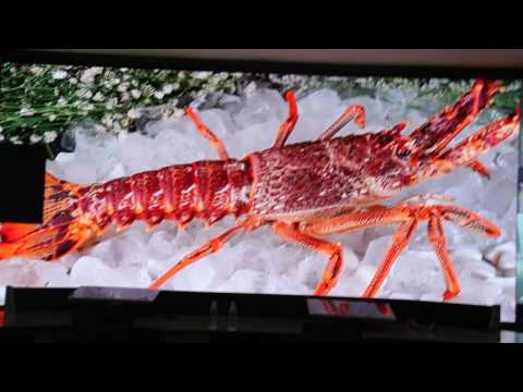 LED Video Wall. From LED togo