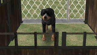 Dog Simulator 3D · Game · Gameplay