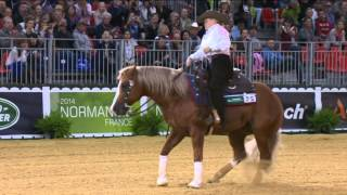 Jeux équestres mondiaux : épreuves de Reining, passage de Mandy MCCUTCHEON