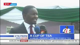 Kiunjuri advises tea farmers to diversify and try different types of tea
