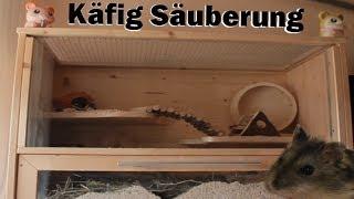 Käfig Säuberung (Hamster Gehege)