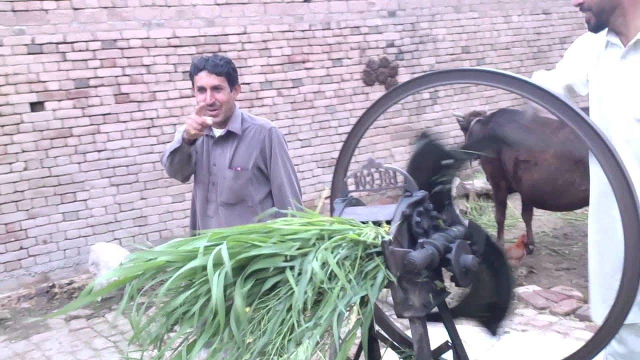 Village Grass Cutter Machine Youtube
