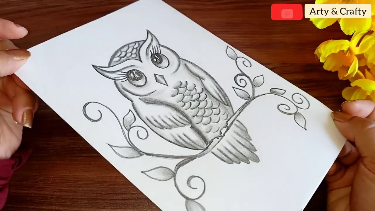 How to Draw an Owl   Pencil Shading   Easy Owl Drawing Step by Step with  only 20 Pencil