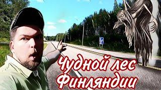 Выходные в Финляндии, день 2./ Странная находка в лесу!?