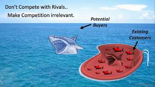 Blue Ocean Strategy  - Business Competition in India by Viral Jadhav (हिन्दी)