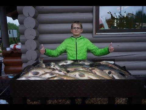 Платная рыбалка в Подмосковье.Платная рыбалка в Московской области. Платные пруды.
