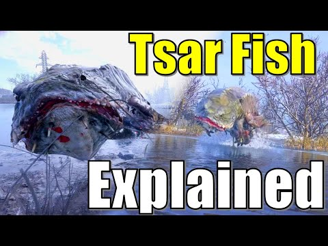 The Tsar Fish Origins In Metro Exodus   Morphology, Lore, Room, Key, Origins And Biology Explained
