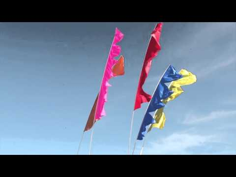 Festival Flags 3