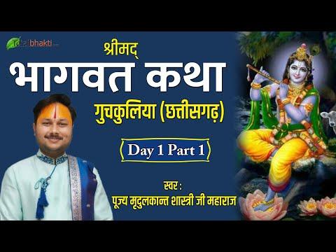 Mridul Kant Shastri Ji Maharaj   Shrimad Bhagwat Katha   Day-1 Part-1    Chhattisgarh