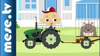 Traktor Robi kalandjai – Kutyakaland (animáció gyerekeknek)