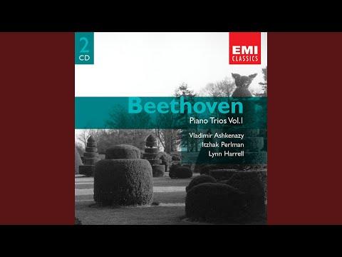 Piano Trio No. 3 in C Minor, Op. 1 No. 3: I. Allegro con brio