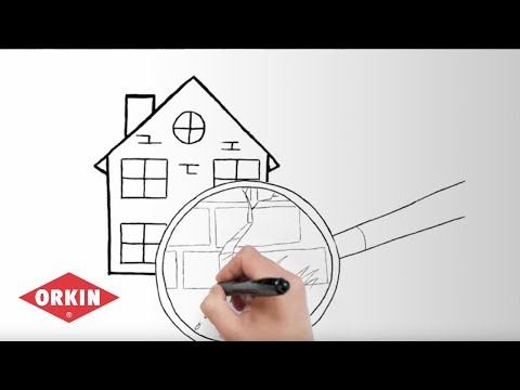 Fighting Termites With Sentricon Orkin Youtube