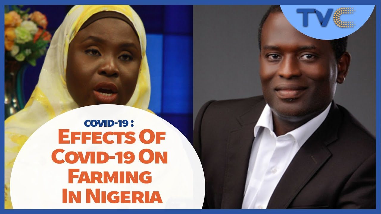 Download Effects Of Covid-19 On Farming In Nigeria