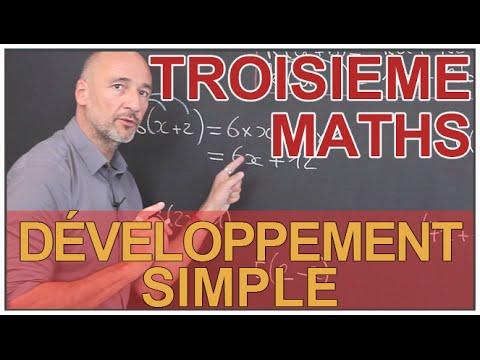 Développement simple - Maths 3e - Les Bons Profs