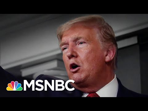 Trump's Halt To Immigration Seen As A 'Shiny Object' Amid COVID-19 Pandemic | The 11th Hour | MSNBC