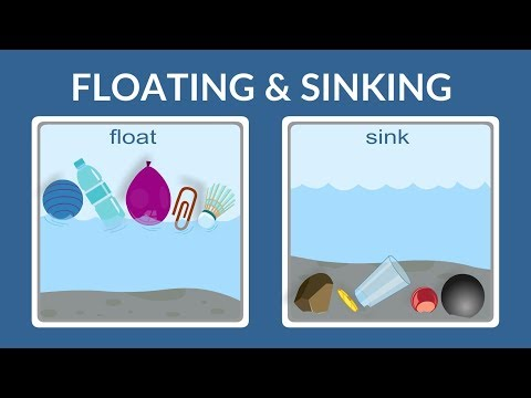 Float Or Sink - Why Do Things Float- Why Do Things Sink- Lesson For Kids