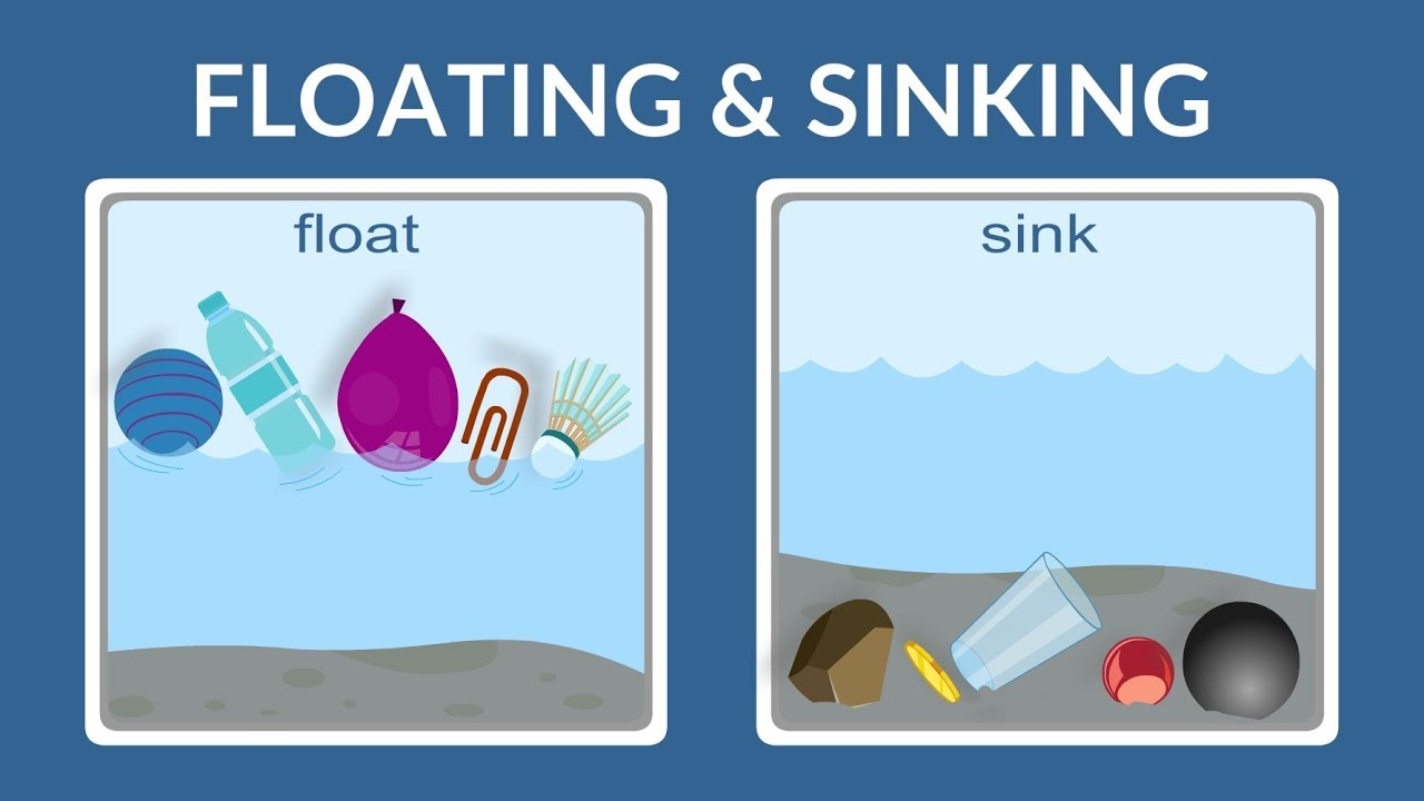 Float Or Sink Why Do Things Float Why Do Things Sink Lesson For Kids