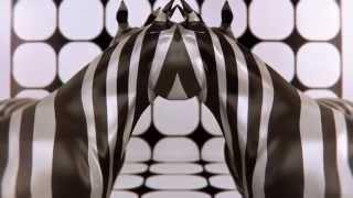 Dmitry Bobrov Video POD110315