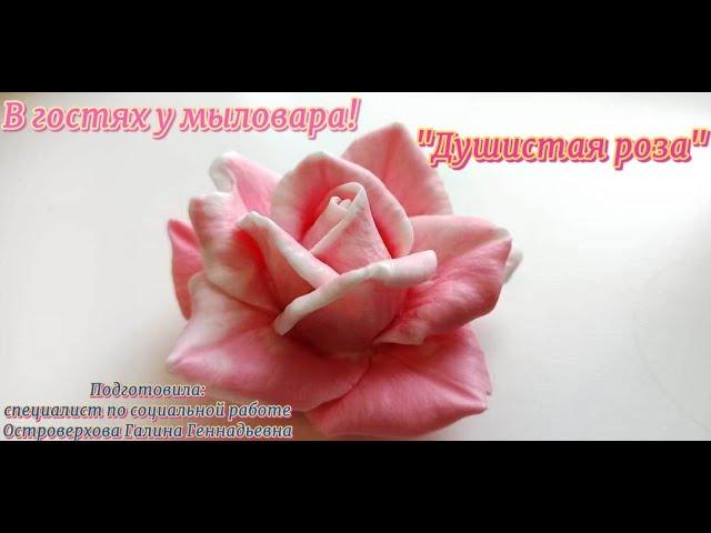 В гостях у мыловара: «Душистая роза»
