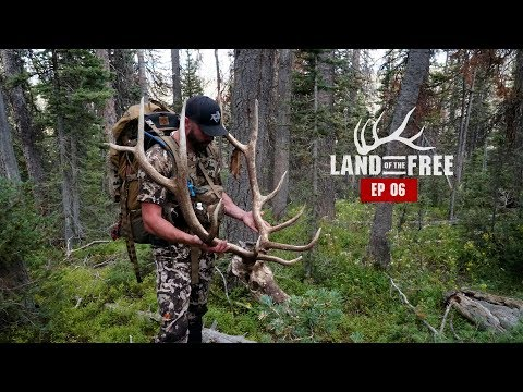 DEAD BULLS IN COLORADO - EP 06 - LAND OF THE FREE 2.0