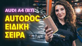 Αντικατάσταση Λάδι κινητήρα AUDI A4: εγχειριδιο χρησης