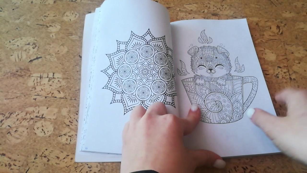 Обзор раскраски Котята и щеночки. Кто милее? •SonDiary ...