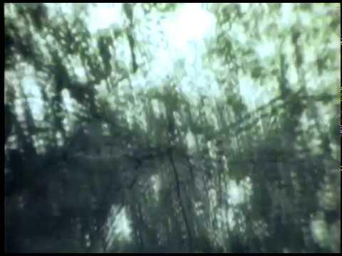 Film 1 Project 2 VM230 Emerson College