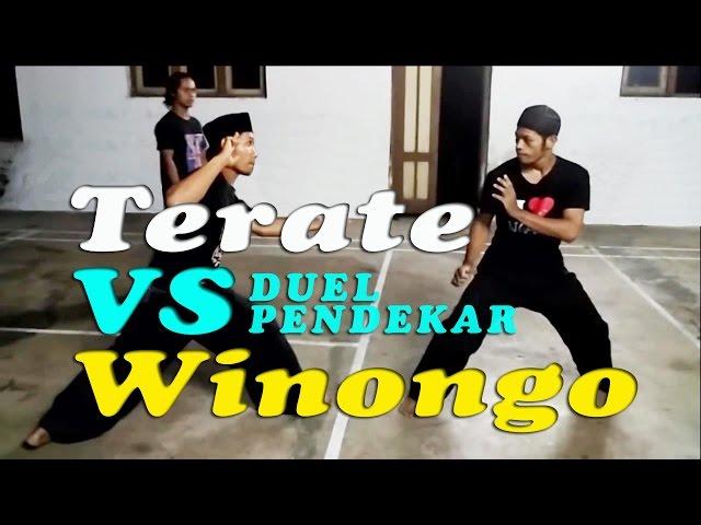 DUEL PENDEKAR Sambung SH Terate VS SH Winongo ???? TERBARU ? full HD