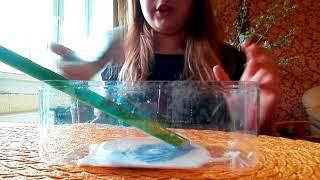 Gambar cover Kuidas teha slime?!