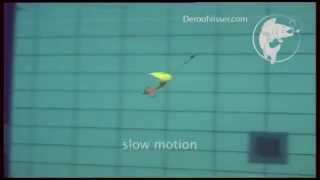 Mepps Aglia video