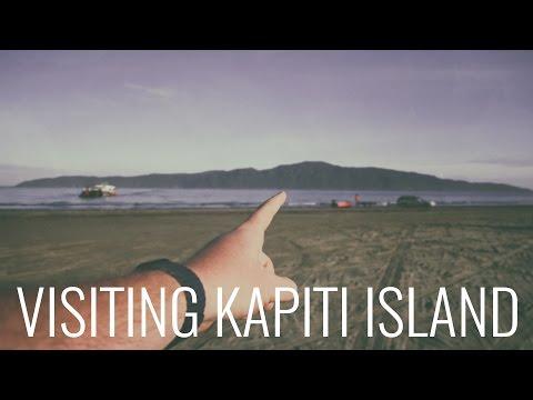 Overnight trip to Kapiti Island with Kapiti Island Nature Tours