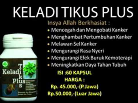 produk2 herbal indo utama