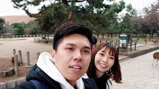 Kyoto, Osaka & Nara 10 Days Trip Travel Vlog