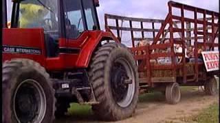 Schuyler Farms Corn Maze