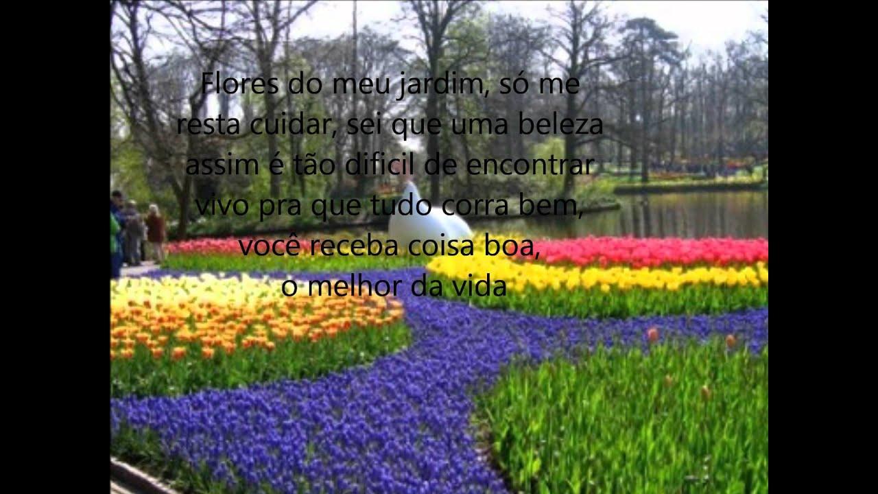 jardim flores e plantas:Flores do meu jardim – Claudia Leitte e Planta e Raiz – YouTube