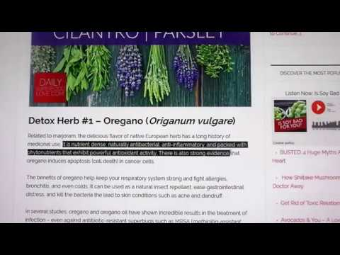 DETOX PROCESS: New Age Oregano Oil Best HERB for Detoxing, Lymphatic System, Gall Bladder, ect...