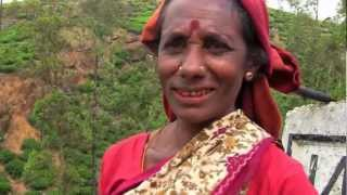 Destination Unknoan The Tea Plantations of Sri lanka Episode 8