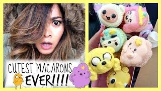 Cutest Macarons Ever!!!