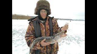 Зимняя рыбалка Река Белая 07 12 2019 г