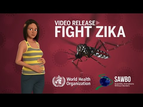 The Zika Virus in English (accent from USA)