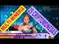 MULTI-MINERIA 29 CRIPTOMONEDAS