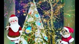 С Новым годом Тебя!🎅🎄🎁Счастливого Рождества!💒Счастья,любви,здоровья,удачи Тебе🎁🙌