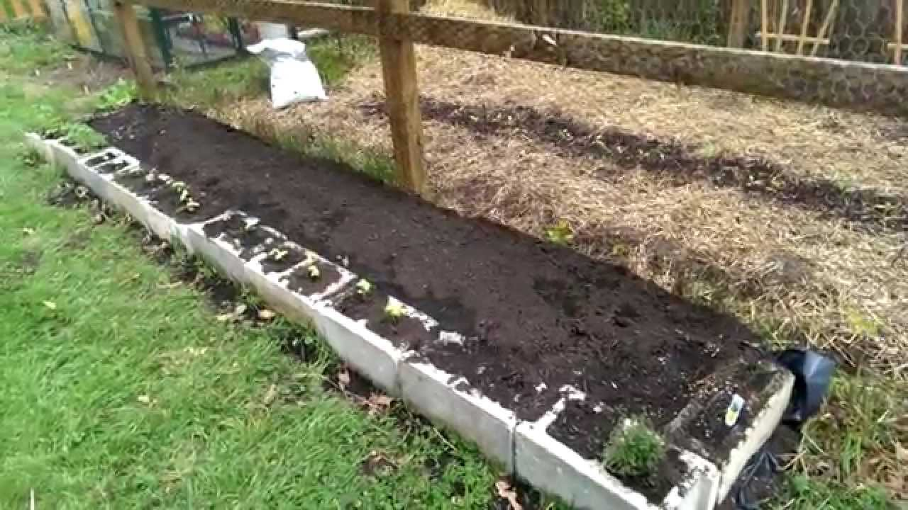 Raised Garden Bed Made From Cinder Blocks