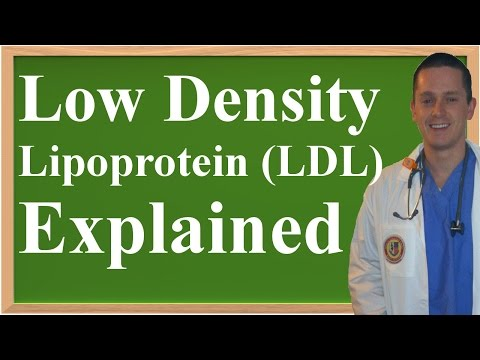 Low Density Lipoprotein (LDL) Explained (Made Easy to Understand!)