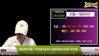 조철스타일 / [7/26/금요] 실전베팅 / 징검다리 UCC