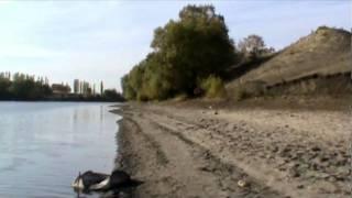 Ольшанка.flv(, 2010-12-24T20:35:15.000Z)