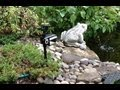 Scarecrow Motion-Activated Animal Deterrent