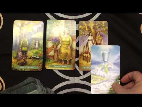 Daily tarot card reading for September 26,...