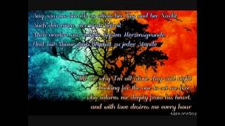 Faun & Subway to Sally ~ Minne Duett (Lyrics and Translations)